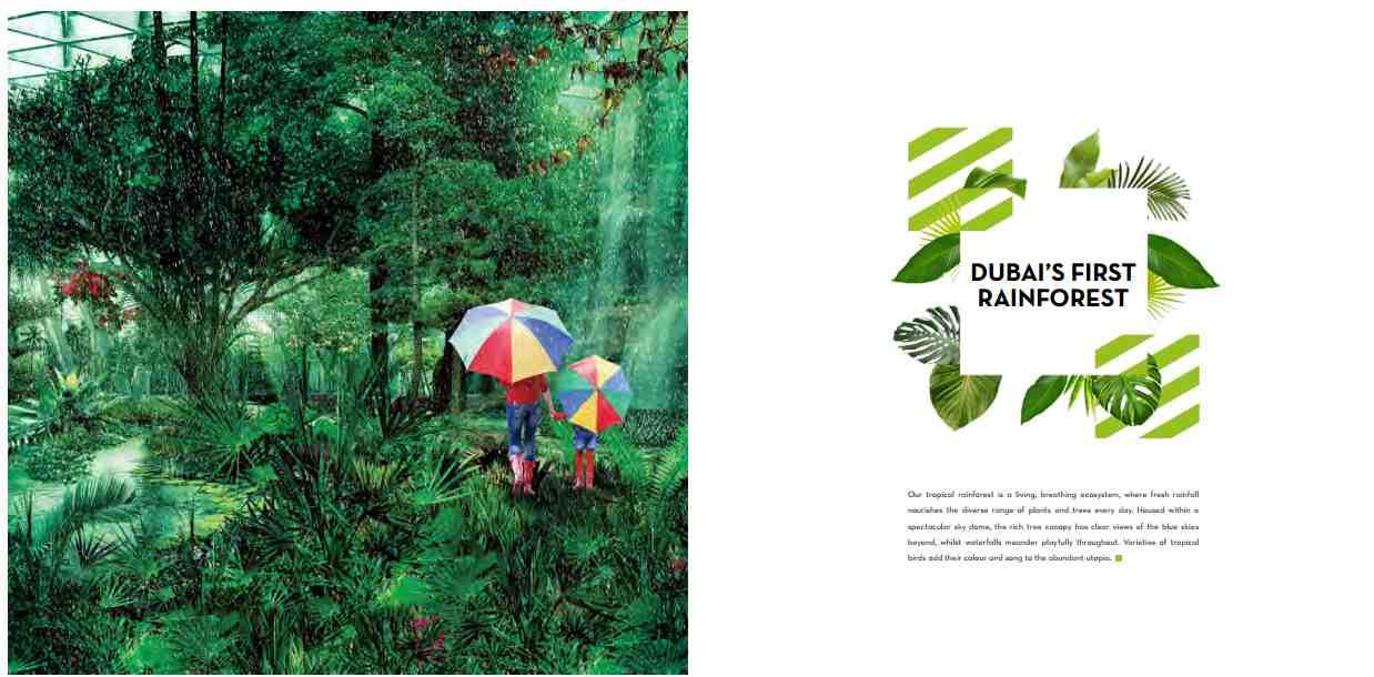 AKOYA OXYGEN BY DAMAC DUBAI
